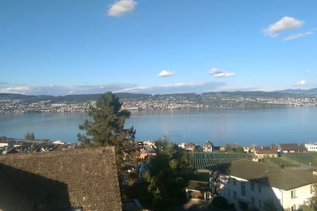 Cosy lakeview double bed room - Wädenswil - Apartment