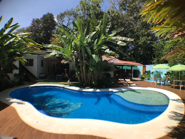 3 bedroom house, Pool/Jungle/Close to the Beach