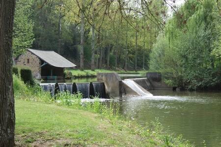Le Moulin Bavard bord de rivière