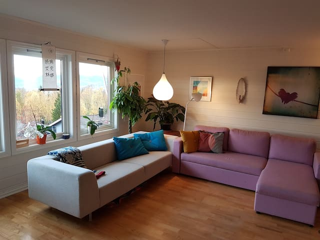 Living room with a sofabed. If you are 6/7 people you must use the sofabed. The sofabed is 140 cm. If it is to narrow for two people, you can have a ekstra madrass one the floor.