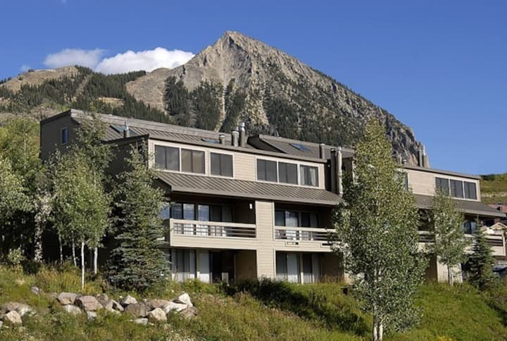 Treat Yourself Cozy Ski Condo at Mt Crested Butte