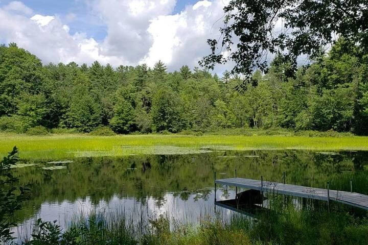 Private Room- Bright, Sunny Retreat on Sebago Lake