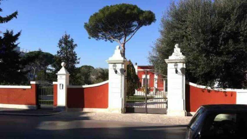 Executive L'Orangerie bb Bari