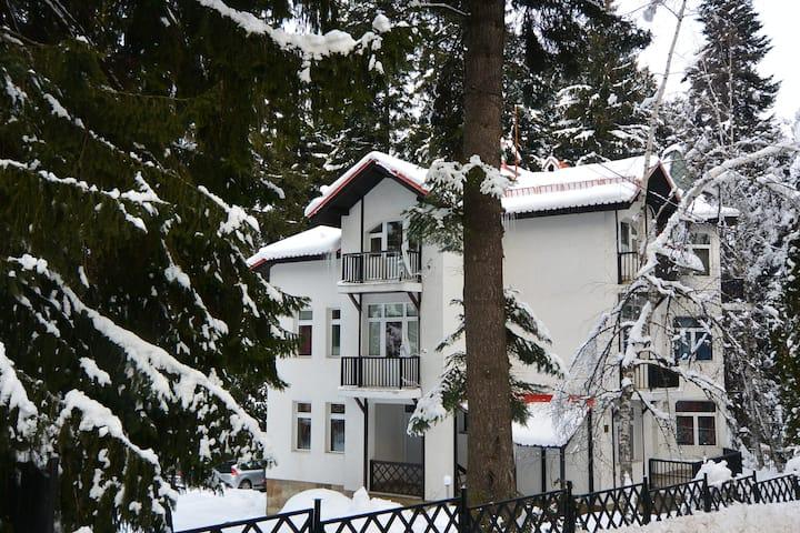 Villa Elena **
