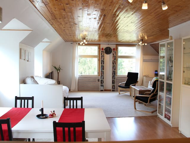 Very Spacious, Sunny Apartment in Relaxing Nature - Kalmar län - Apartament