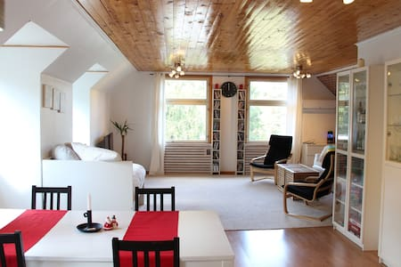 Spacious, Fully Furnished Apartment in Nature - Daire
