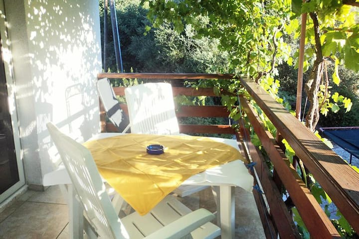 Studio flat near beach Zaklopatica (Lastovo) (AS-993-c)