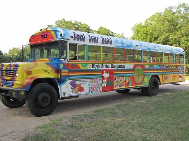 Gypsy Love Bus - Nederland - Cabane