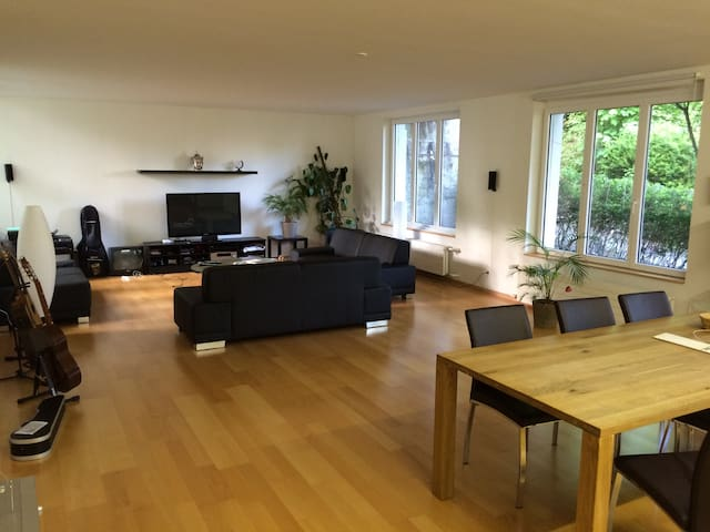 Room in a shared student flat - Saint Gallen - Huoneisto