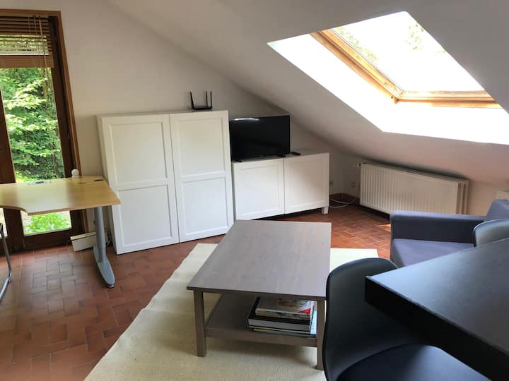 Bright 45 sqm duplex studio close to Brussels