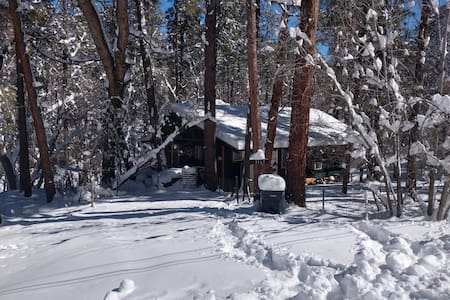 Cabin on the creek in the pines