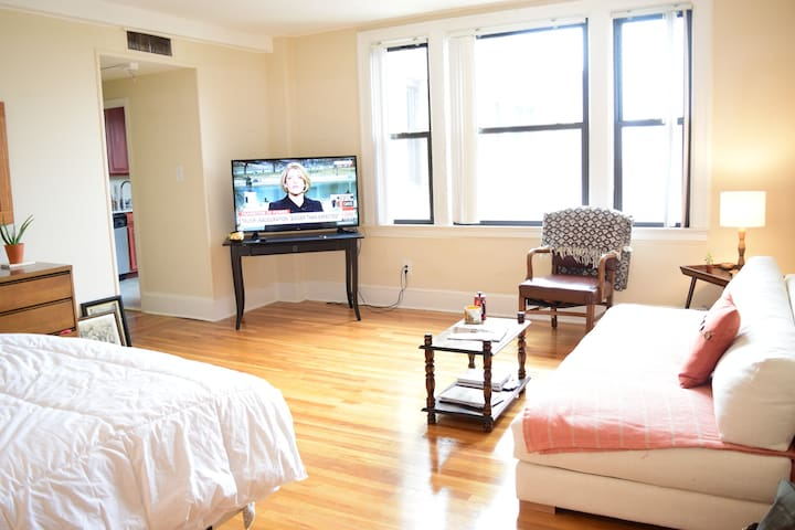 Open and Spacious Studio Apt in Adams Morgan, DC - Washington - Appartement