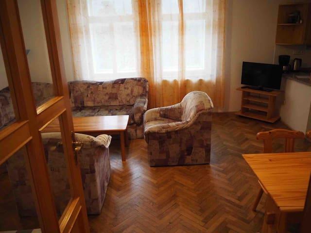 Spacious apartment in ski-resort