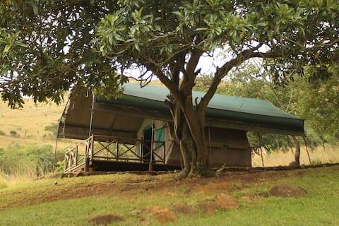 Hlomo Hlomo Game Reserve & Camp