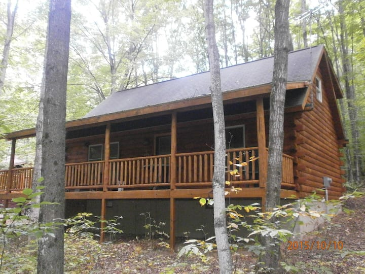"""""""CABIN IN THE WOODS"""" ... A Four Season Destination"""