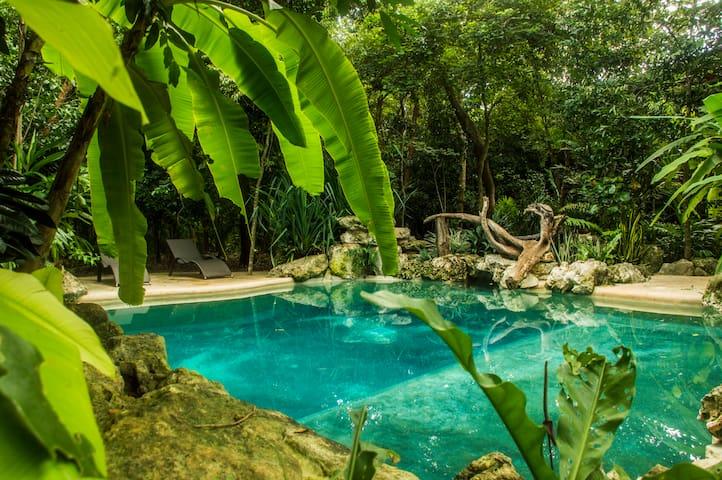 Poolside Twin Room Hacienda Cancun
