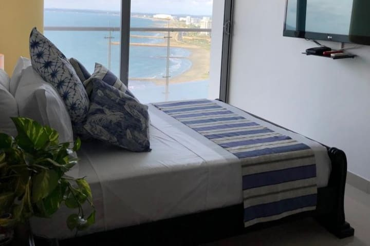 Room with sea view, balcony and pelicans