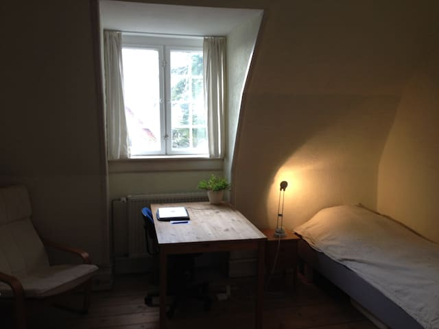 Room near by forested park and a walk to the sea. - Charlottenlund - Apartamento