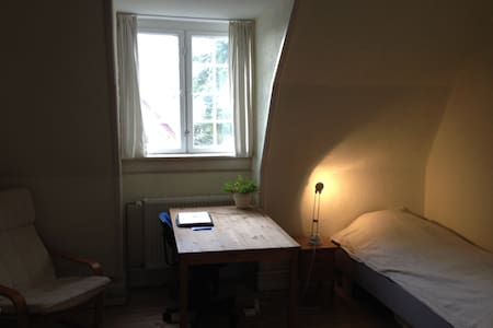 Room near by forested park and a walk to the sea. - Charlottenlund