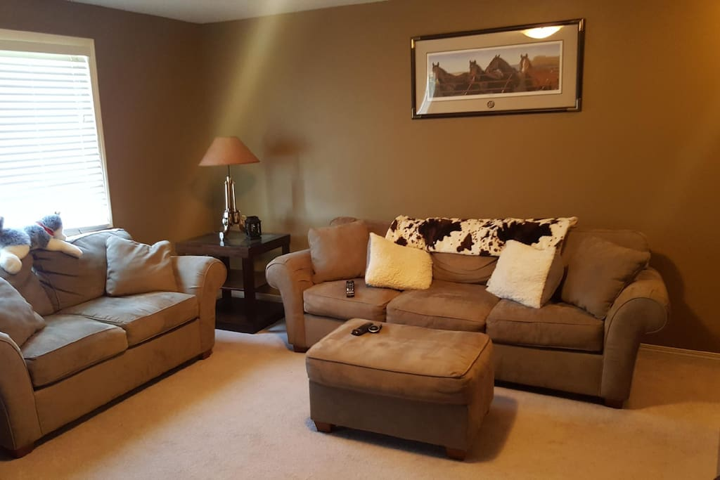 Private area in basement includes Sofa, Love Seat and Chair (not in photo)