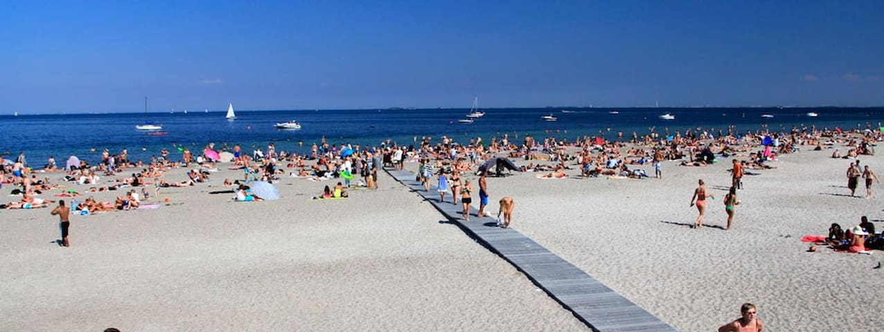 Amager beach. You can walk or cycle to the beach