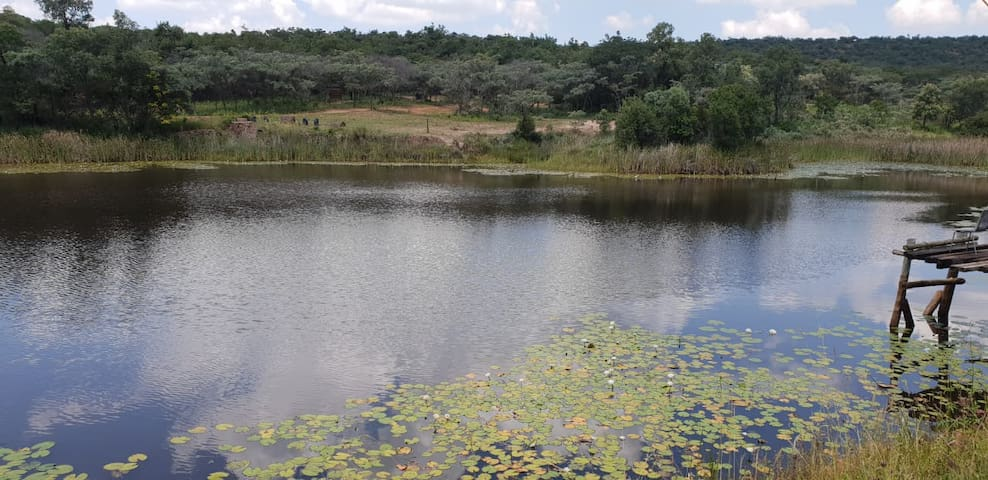 Bushveld Breakaway