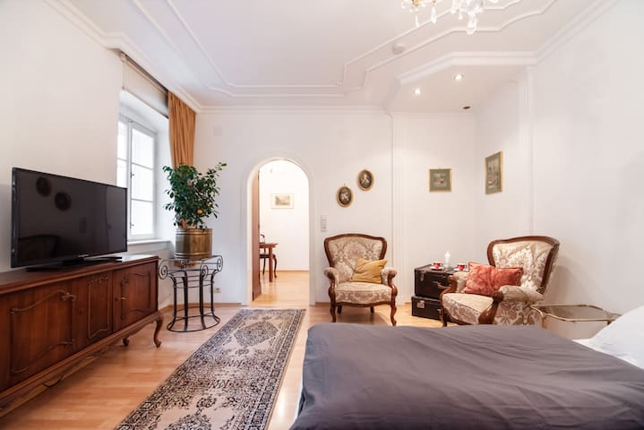 Classic  Apartment in the Heart of Vienna