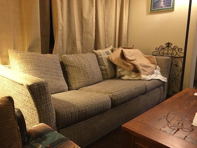 SOFA  atSki Mt Condo hotub kitchen - Steamboat Springs - Apartamento