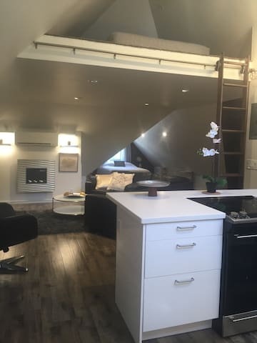 Deluxe, classy, hip loft - in prime Downtown FTC