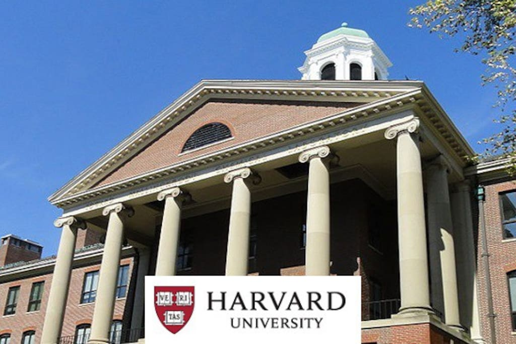 Harvard is only 10 mins walking distance. If you are tired of walking, you can always take the T, only 1 stop away.
