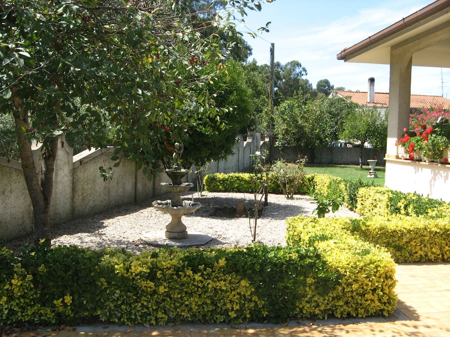 Front garden with fountain