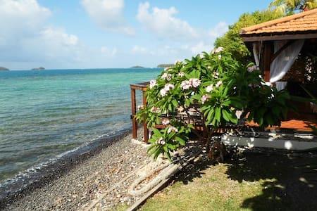 Petit gîte dans jardin tropical et accès mer