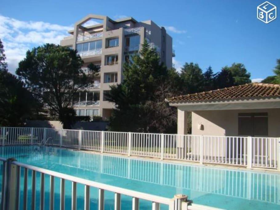 Studio centre ville r sidence calme avec piscine for Residence porto vecchio avec piscine