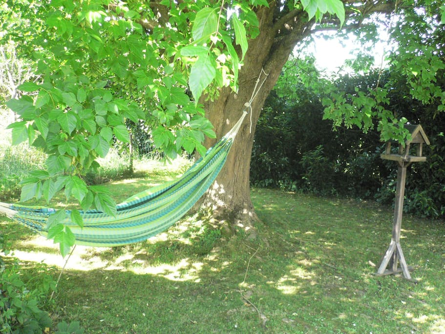 Maison jardin terrasse et veranda maisons louer - Terrasse jardin botanique montreal poitiers ...