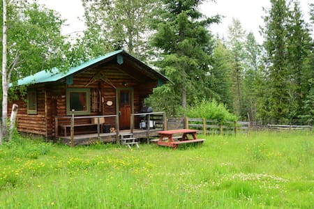 Beaver Lake Homestead (Cedar)