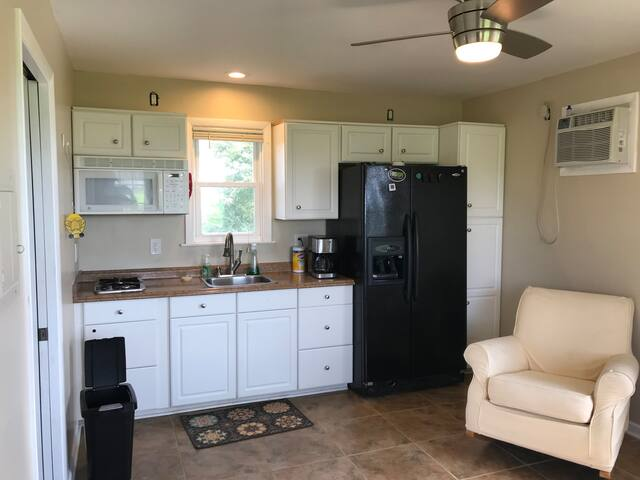 Living area on main floor with full kitchen