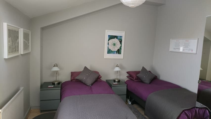 Lovely double room- great location - London - House