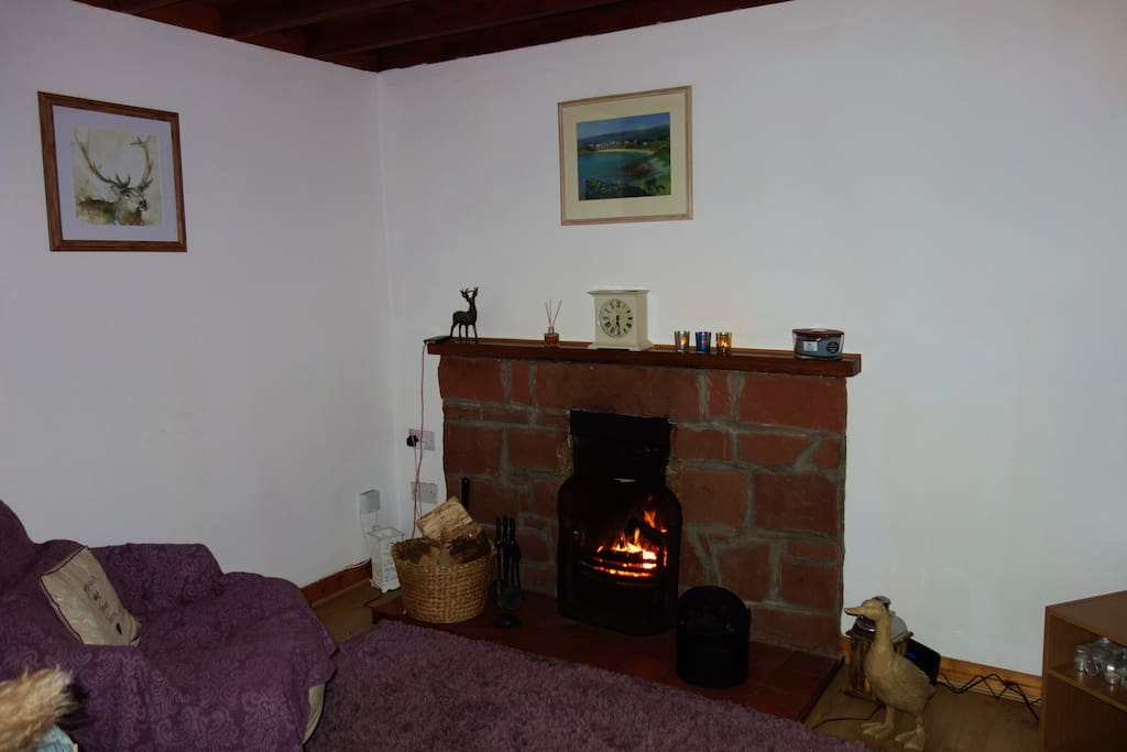 Living room with cosy open fire