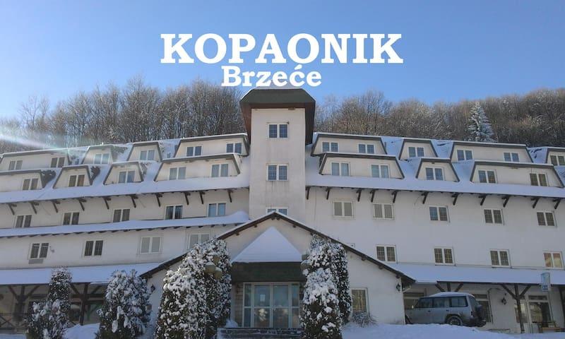 Apartment KOPAONIK ALL SEASONS Brzece