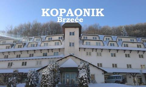KOPAONIK GONDOLA apartment