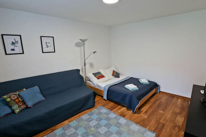 DOWNTOWN APARTMENT * QUITE AREA * FREE PARKING