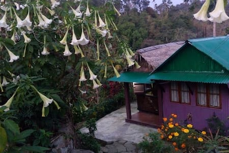 Ibansara's Hut