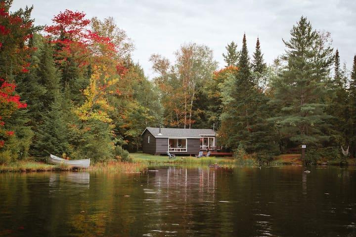 Monett Bay on Bay Lake - Newly renovated cottage!