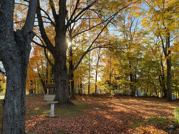 Leaf Peepers Paradise! Only 100 minutes from NYC