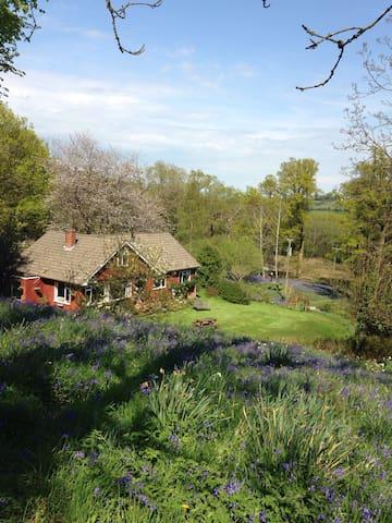 Idyllic Quantock - Stockland - Dům
