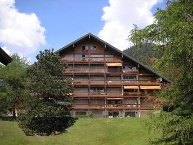 Chaleureux appartement à Villars-sur-Ollon Suisse - Ollon - Apartament