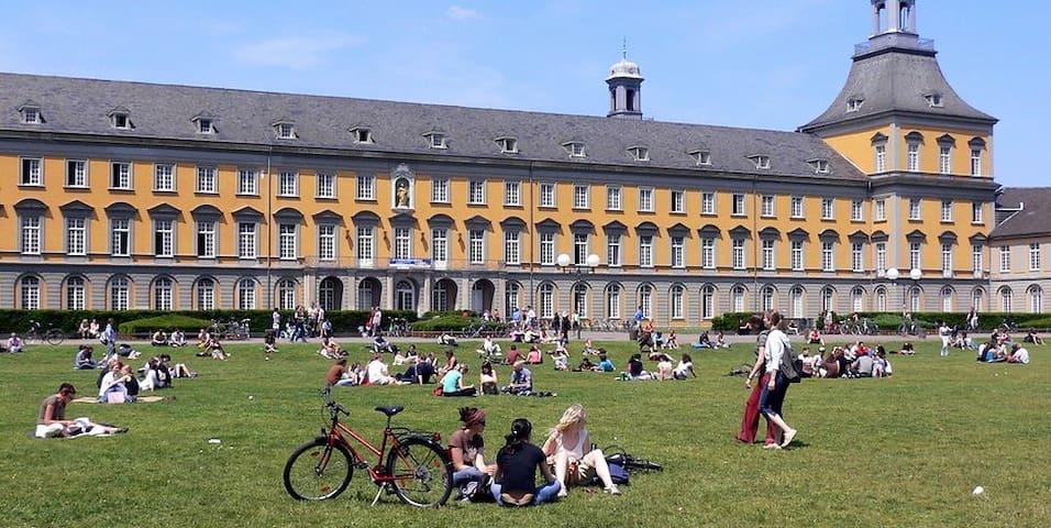 Studio 36 qm im Universitätsviertel Bonn