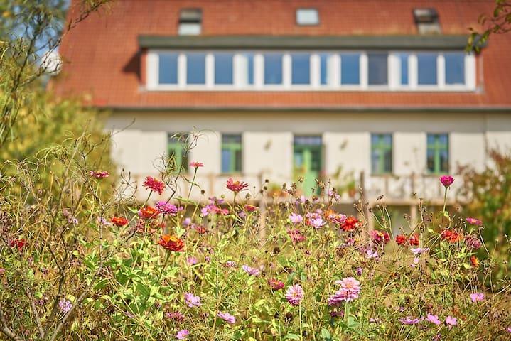 Apfelwiesenhof - Hof am Deich - Kastanienzimmer