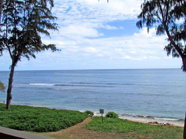 Direct Oceanfront 354