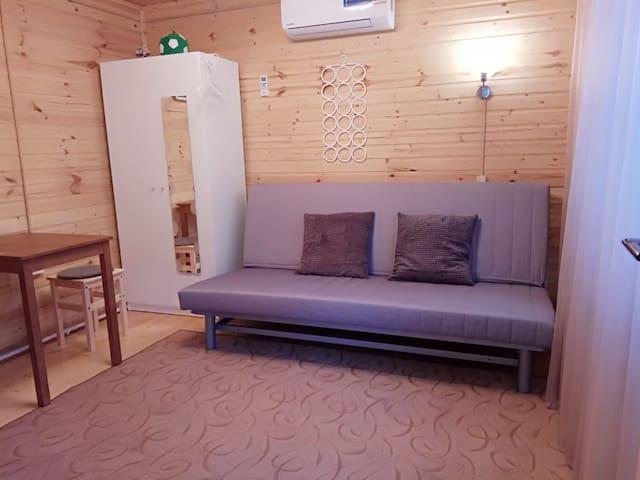 Зал, кондиционер, шкаф для белья и диван в сложенном виде